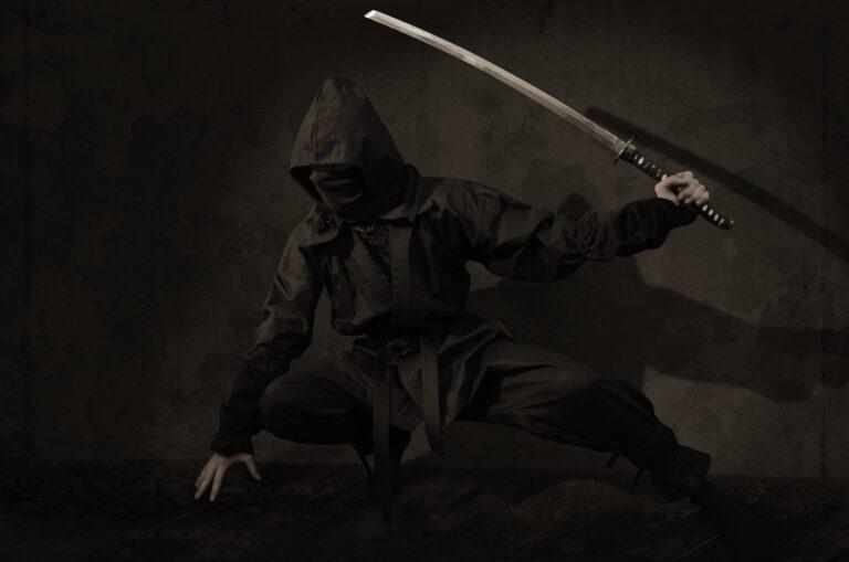 Top Ninja Movies You Need To See