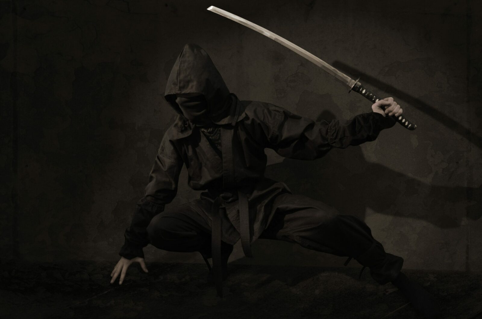 Top Ninja Movies You Need To See