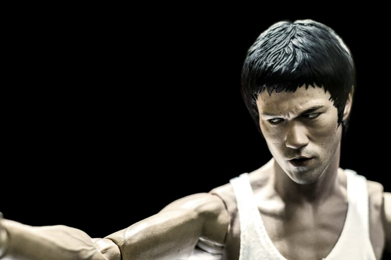 Read more about the article Types Of Kung Fu Styles