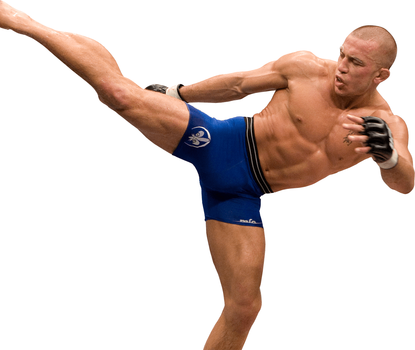 Read more about the article Georges St. Pierre Workout Program: Rushfit