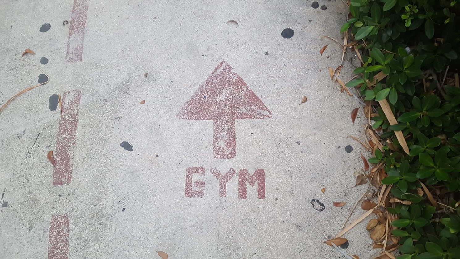 Read more about the article 10 Gym Membership Marketing Ideas To Drive New Member Sales